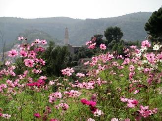 huerta_casa rural shariqua