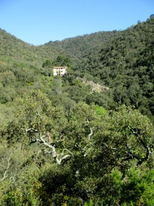 mosquera13_casa rural shariqua