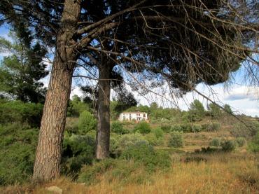 cruceta jerica8_casa rural shariqua