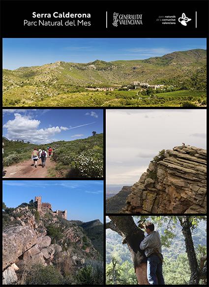 Cartel-Calderona-BAJA