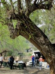 calçotada6_casa rural shariqua