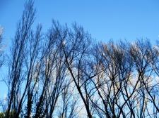 invierno23_casa rural shariqua
