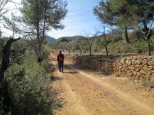 masias2_casa rural shariqua