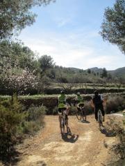 masias7_casa rural shariqua