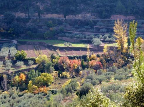 palancia-amador17_casa-rural-shariqua