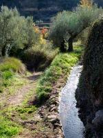 palancia-amador19_casa-rural-shariqua