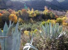 palancia-amador22_casa-rural-shariqua