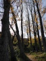 palancia-amador26_casa-rural-shariqua