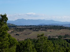 palancia-amador_casa-rural-shariqua