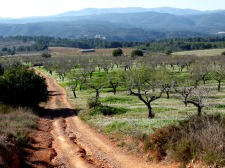 gaibiel14_casa-rural-shariqua