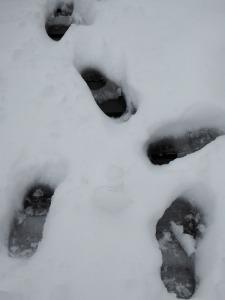 nieve-alto-palancia13_casa-rural-shariqua