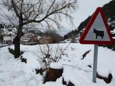 nieve-alto-palancia7_casa-rural-shariqua