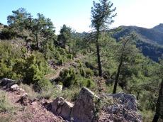 ain-sierra-espadan17_casa-rural-shariqua