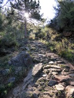 ain-sierra-espadan5_casa-rural-shariqua