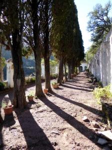ain-sierra-espadan_casa-rural-shariqua